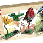 LEGO Birds 21301 LEGO Ideas 2015 Set Released!